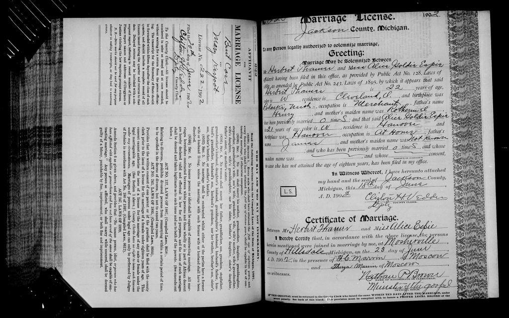 Michigan, Marriage Records, 1867-1952 - Thamer Genealogy
